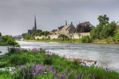 在盛大河的前景的花在剑桥 免版税库存照片