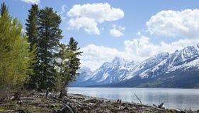在盛大Teton山脉下的Lewis湖 免版税库存图片