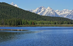 在盛大Tetons的登上Moran前面的Jenny湖在怀俄明美国 免版税库存照片