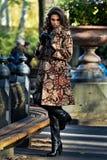 在相当摆在秋天公园的典雅的外套的时装模特儿 库存图片