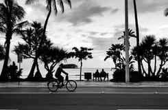 在看太阳的海滩的一条长凳供以座位的夫妇 库存图片