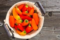 在看法上的五颜六色的微型胡椒在木头的葡萄酒篮子 免版税库存图片