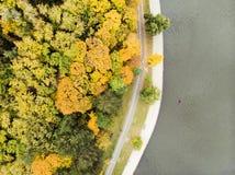 在看法上的空中寄生虫在valea morilor公园 库存照片