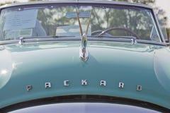1951年在看法的帕卡德敞篷车头 库存图片