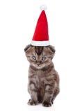 在看照相机的红色圣诞节帽子的微小的小猫 查出在白色 免版税库存照片