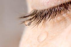在睫毛和面颊的一滴泪花 库存照片