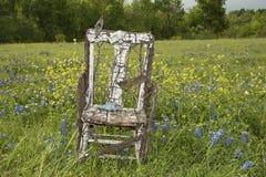 在矢车菊的领域的老椅子 免版税库存照片