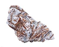 在矩阵标本的粗砺的Astrophyllite从白色的俄罗斯 其他名字:Aastrophyllite,Asterophyllite,Astrofillit 库存图片
