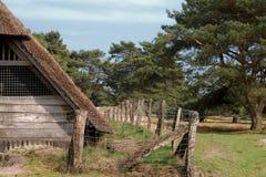 在石南花和荒野的老村庄北 免版税图库摄影