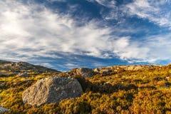 在石南花的大岩石 西部小岛,苏格兰 库存图片