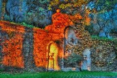 在石墙上的常春藤与晚上点燃, atsunset 库存照片