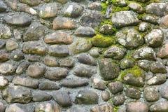 在石墙上的青苔背景纹理的 免版税库存图片