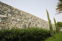 在石墙前面的树篱 库存照片