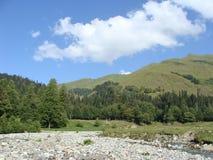 在石头中的山河 免版税库存照片