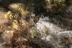 在石头之间的河与秋叶 免版税库存图片