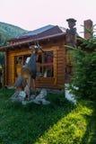 在石头的木驯鹿在山的Hutsul房子附近 免版税库存照片