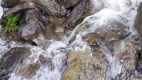 在石头的水小河 在岩石的小水秋天 流动在石头之间的水 股票录像