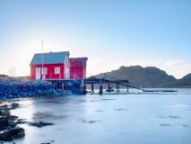 在石海岛上的挪威渔村 安静的海湾的走路的红色白色房子 光滑水平面反映 库存照片