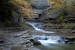 在石溪的秋天 免版税库存图片