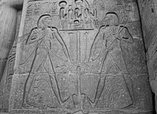 在石灰石墙壁上的埃及象形文字在埃及寺庙 图库摄影