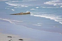 在石灰石海岸的海难 图库摄影
