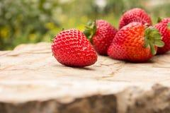 在石背景的成熟草莓 免版税库存图片