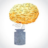 在石花瓶的橙色墨西哥花 免版税库存照片