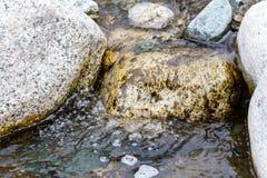在石头中的净水 免版税库存照片