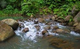 在石头中的森林小河 清洗在山的冷水小河 免版税库存图片