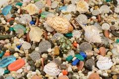 在石头和壳的湿金属货币 免版税库存图片