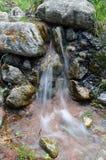 在石头和青苔中的一条小河 图库摄影