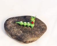 在石头的一条毛虫 免版税库存图片