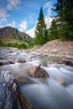 在石头的棍子在一条小河在西部阿尔卑斯 库存图片