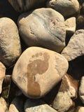 在石头的湿脚印 库存图片