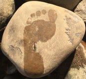 在石头的湿脚印 图库摄影