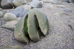 在石头, Ballinskellig海滩,爱尔兰的被风化的凹线 免版税库存图片