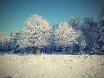 在矿石山的冬天 库存图片
