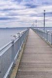 在码头和多云天空的海鸥 免版税库存图片