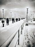在码头的北欧走的小组 免版税图库摄影