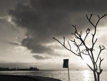 在码头的日落 免版税库存图片
