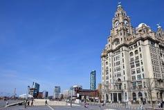 在码头头的皇家肝脏大厦在利物浦 库存图片