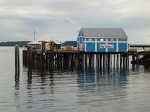 在码头的鱼市 免版税库存图片