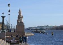 在码头的4月天有狮身人面象的 圣彼德堡 库存图片