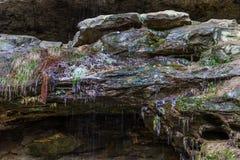 在砂岩岩石的冰在森林里 免版税库存照片
