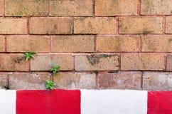 在砖墙纹理背景下的红色和空白线路 免版税库存照片