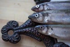 在砧板,特写镜头顶视图的生鱼 免版税图库摄影
