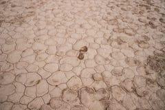 在破裂的白色多灰尘的地面的偏僻的脚印 免版税图库摄影