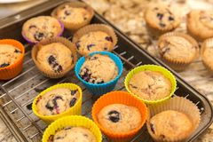 在硅树脂杯,自创点心的蓝莓松饼 图库摄影