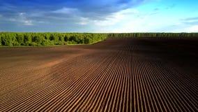 在硼领域上的空中行动荡桨,无需发芽由森林 股票录像