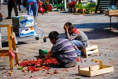 在碎红色樱桃驱散的两个男孩 免版税库存照片